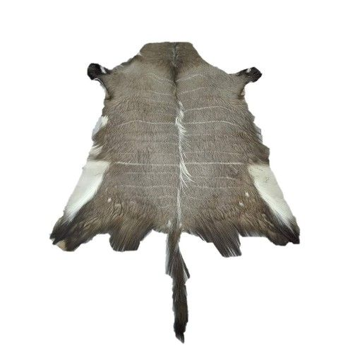 Afrikanischer Nyala Lederteppich 130x120 cm Zerimar - 1