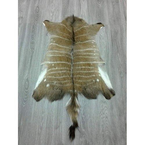 Afrikanischer Nyala Lederteppich 90x75 cm Zerimar - 2