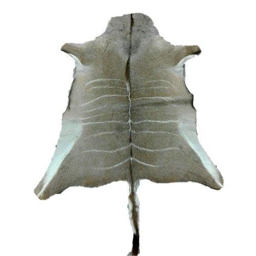 Natürlicher afrikanischer Kudu Haut Teppich 165x130 cm Zerimar - 1