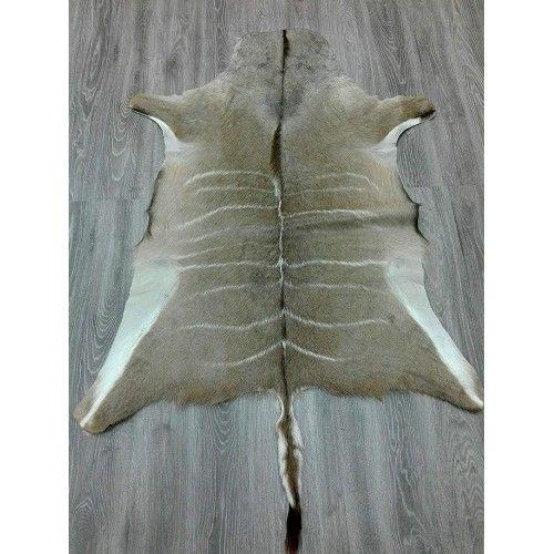 Natürlicher afrikanischer Kudu Haut Teppich 165x130 cm Zerimar - 2