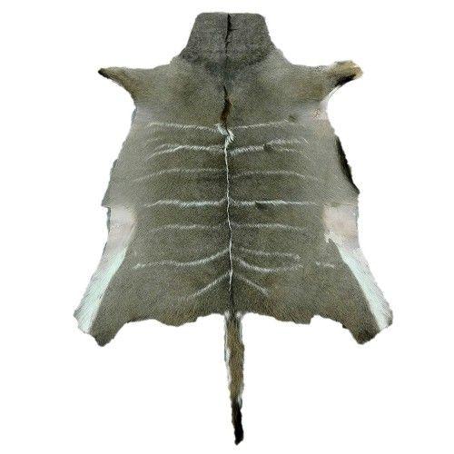 Natürlicher afrikanischer Kudu Haut Teppich 160x115 cm Zerimar - 1