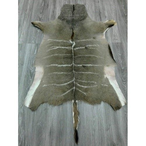 Natürlicher afrikanischer Kudu Haut Teppich 160x115 cm Zerimar - 2