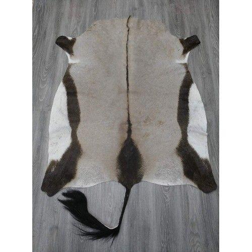 Natürlicher afrikanischer Oryx Lederteppich 150x125 cm Zerimar - 2