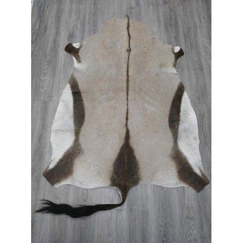 Teppich natürliche afrikanische Oryxhaut 160x120 cm Zerimar - 2